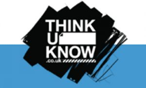 Thinkuknow: Online safety at home